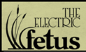 Electric Fetus Records